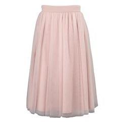 Little Misdress Net Skirt