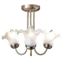 Tulip 3 Arm Ceiling Light