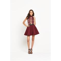Rare High Neck Lace Plunge Skater Dress