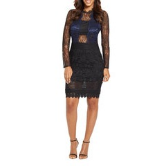 Very Chantilly Lace Long Sleeve Dress